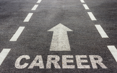 Mounting an effective job search